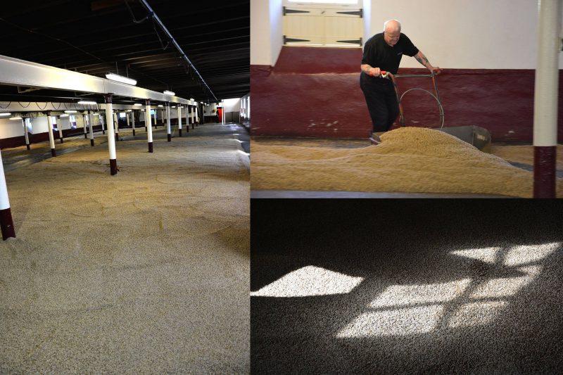 Floor Malting